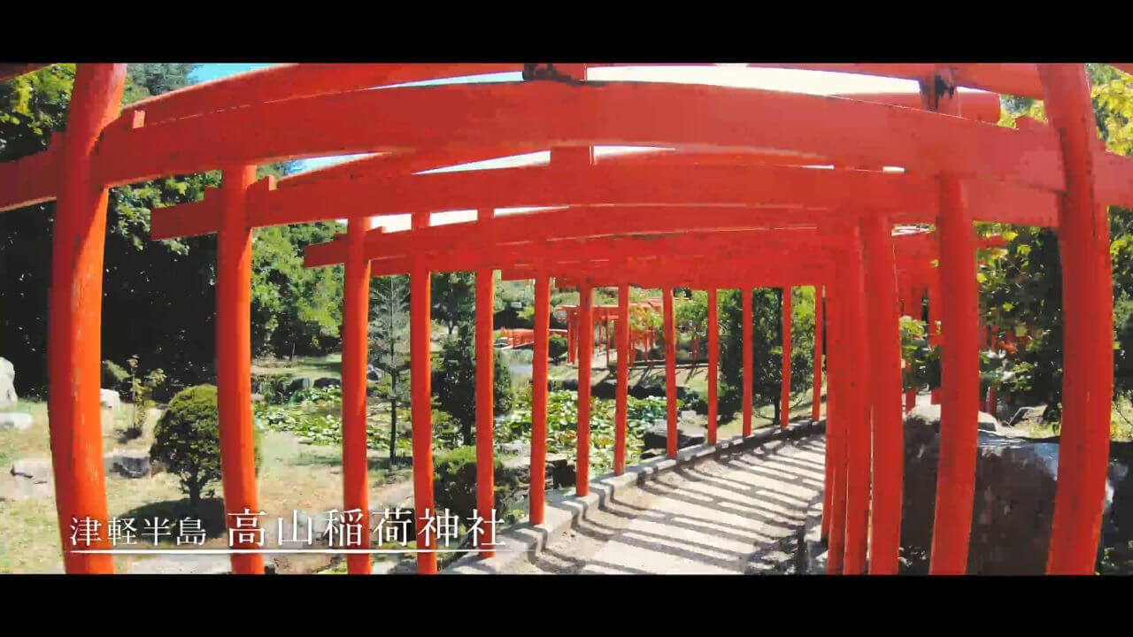 高山稲荷神社の千本鳥居