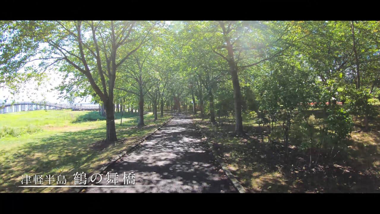 鶴の舞橋までの散歩道
