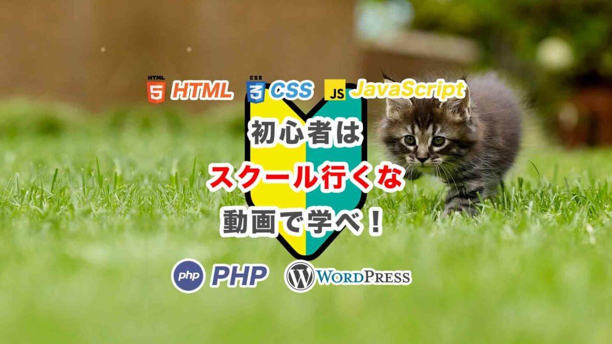 プログラミング動画講義【質問無制限】